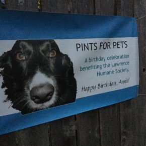 Pints for Pets