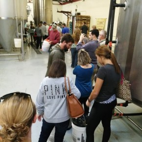 Free State Wort Giveaway